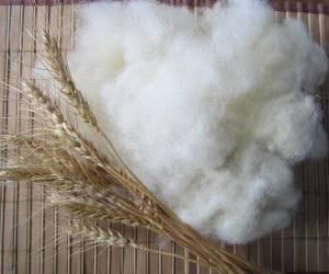 Як прати овечу вовну (сирець): інструкція