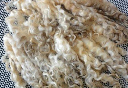 как постирать овечью шерсть