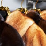 Как хранить норковую шубу в домашних условиях?