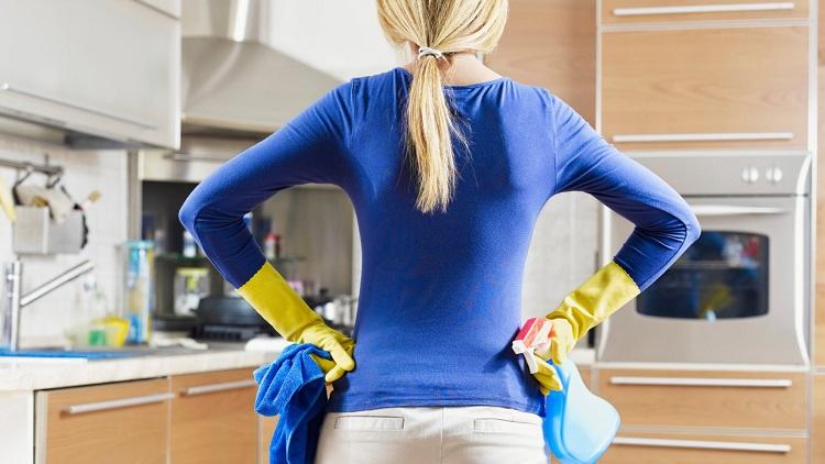 Як позбутися від мошок в квартирі