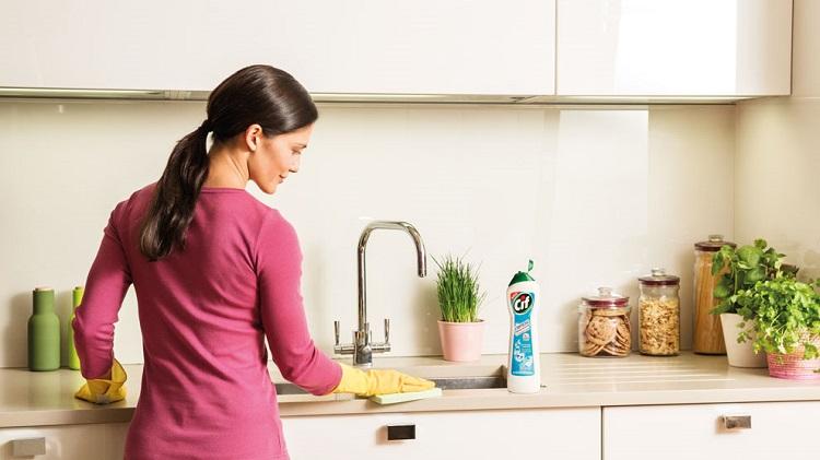 как убрать кухню от мошек