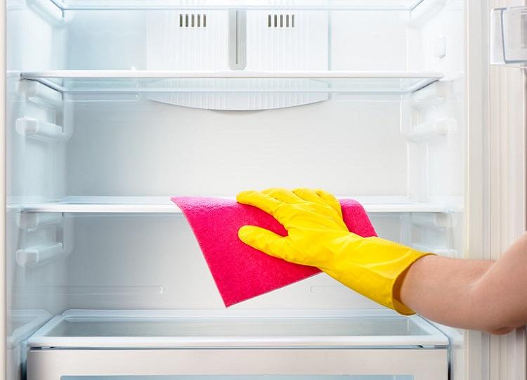 плесень в холодильнике что делать