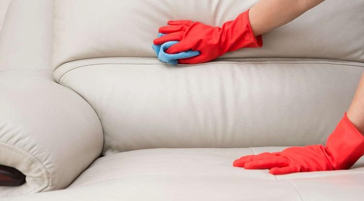 як почистити диван від кошачої сечі