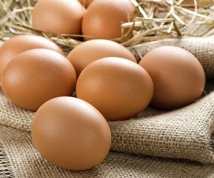 Термін придатності курячих яєць