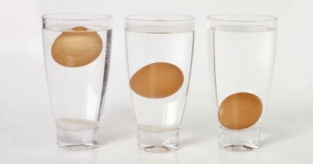 як визначити свіжість яєць