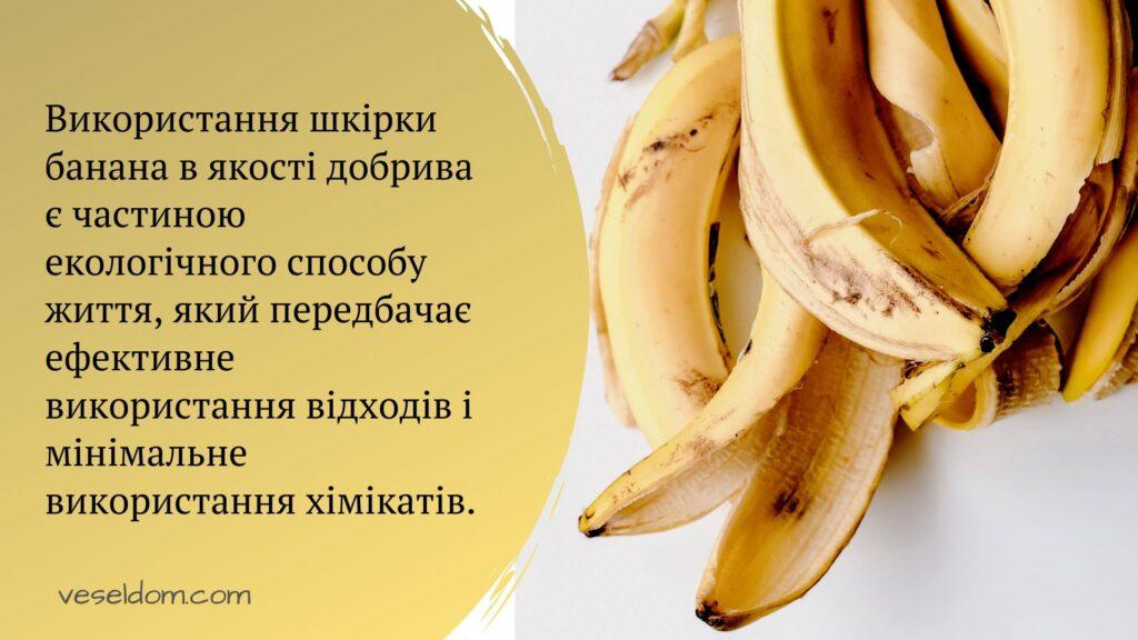 як зробити добриво з бананової шкірки