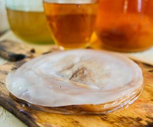 Як зберігати чайний гриб правильно